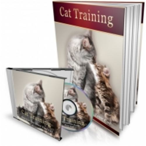 Product picture Cat Training eBook